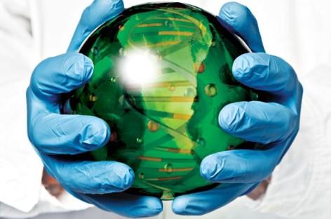 Xử lý chất thải bằng công nghệ sinh học