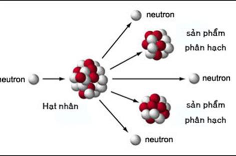 Kiến thức cơ bản về năng lượng hạt nhân
