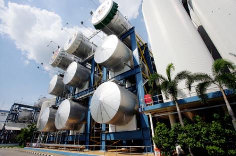 Ứng dụng biomass trong sản xuất của doanh nghiệp Việt