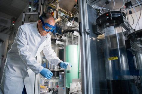 BASF cung cấp linh kiện cho 400.000 ô tô điện mỗi năm